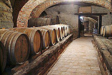 Botti di vino in fila in un'azienda vinicola in Piemonte.