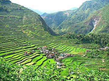 Dalla cima di Batad, un villaggio di Banaue, ad Ifugao.