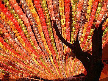Lanterne di carta al Tempio Jogyesa per il Festival delle Lanterne del Loto, che celebra il compleanno del Buddha.