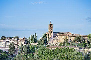 Basilica di San Francesco a Siena, e la natura circostante.