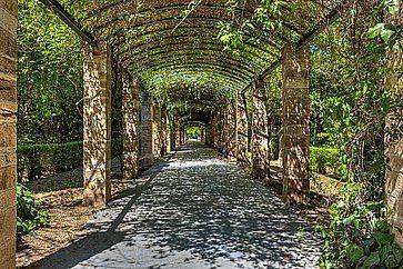 Il Giardino Nazionale (ex Giardino Reale) di Atene.