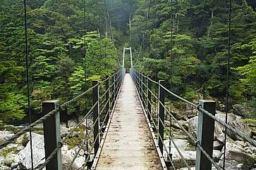 Un ponte sospeso a Yakushima.