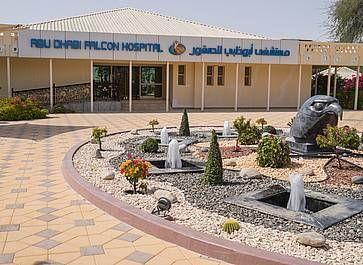 L'unico ospedale veterinario al mondo esclusivamente per falchi e pellegrini ad Abu Dhabi.