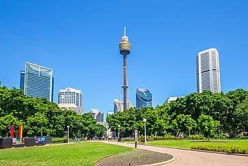 La Sydney Tower e il vicino Hyde Park.