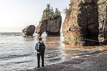 Formazioni rocciose al Hopewell Rocks in Canada.
