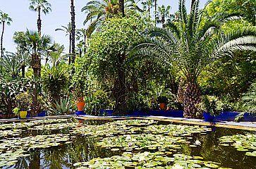 Il giardino Majorelle a Marrakech.