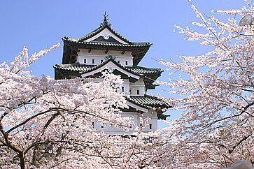 Il castello di Hirosaki contornato da fiori di ciliegio.