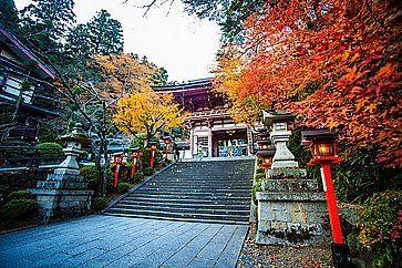 Il tempio Kurama Dera in autunno.