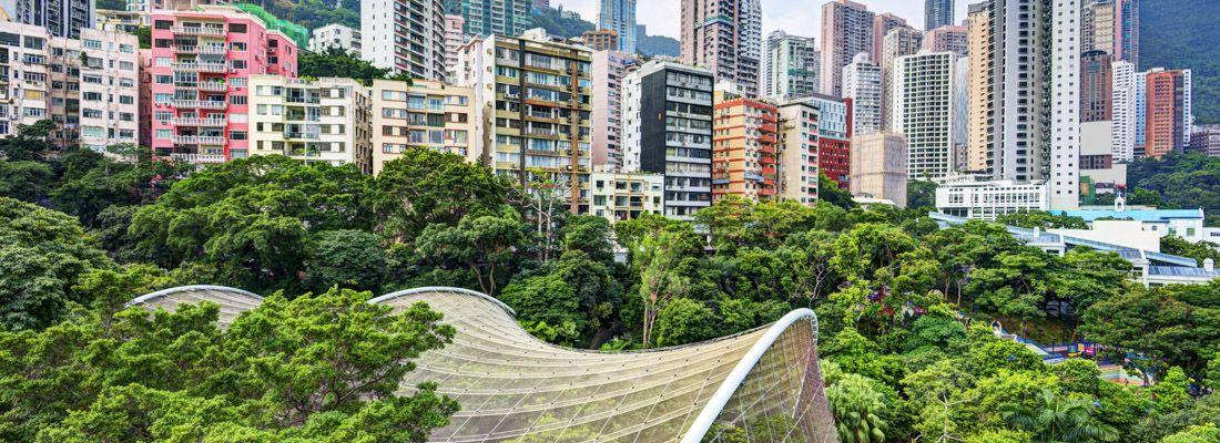 L'Hong Kong Park e i grattacieli.