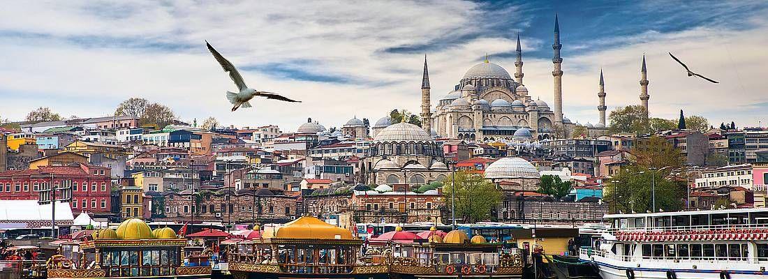 Gabbiano in volo e Skyline di Istanbul.