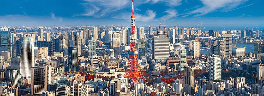 La vista di Tokyo, con in primo piano la Tokyo Tower.