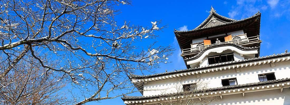 Il castello di Inuyama in primavera.