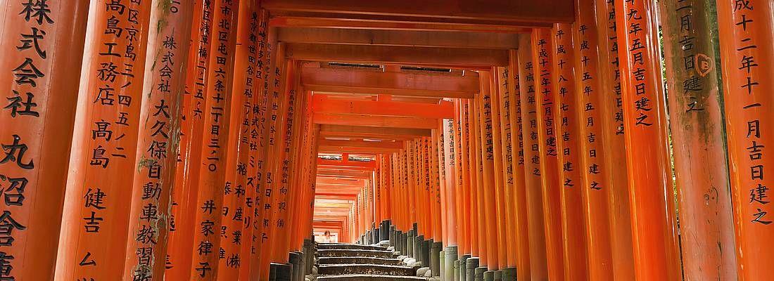 I portali rossi del Fushimi Inari di Kyoto, senza persone.