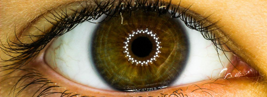 Dettaglio di un occhio, molto nitido.
