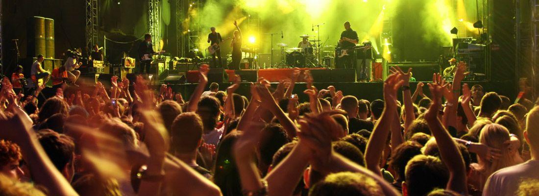 Folla in delirio ad un concerto.
