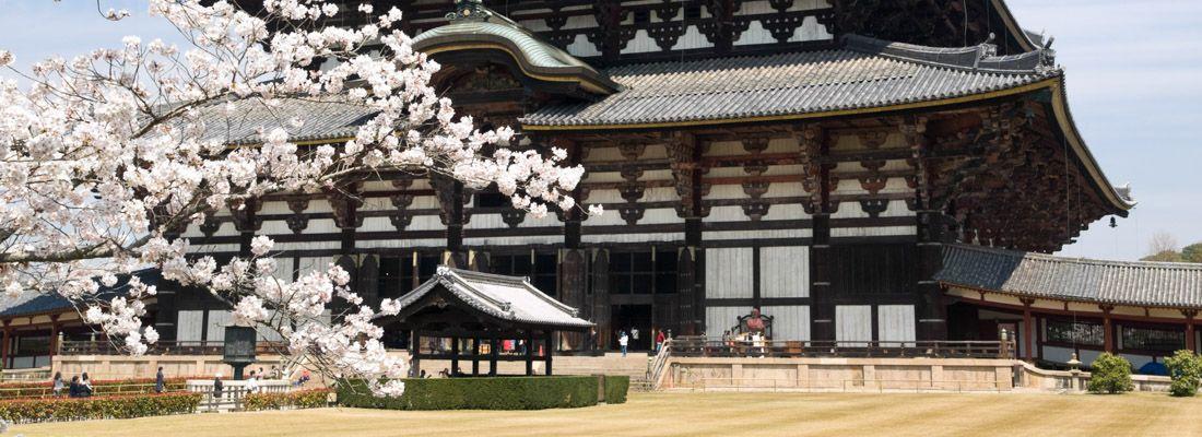 Il tempio Todai-ji di Nara, in primavera.
