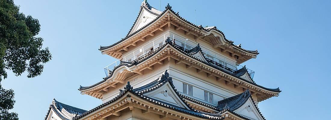 Il castello Odawara.