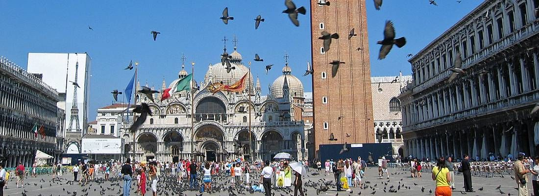 Piccioni volano a Piazza San Marco a Venezia.