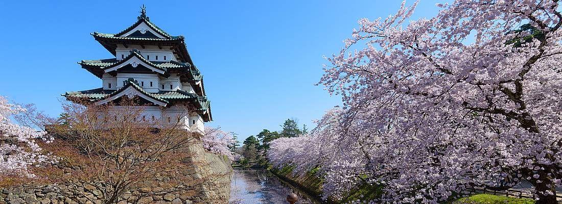 Il castello di Hirosaki, nel Parco di Hirosaki, in primavera.