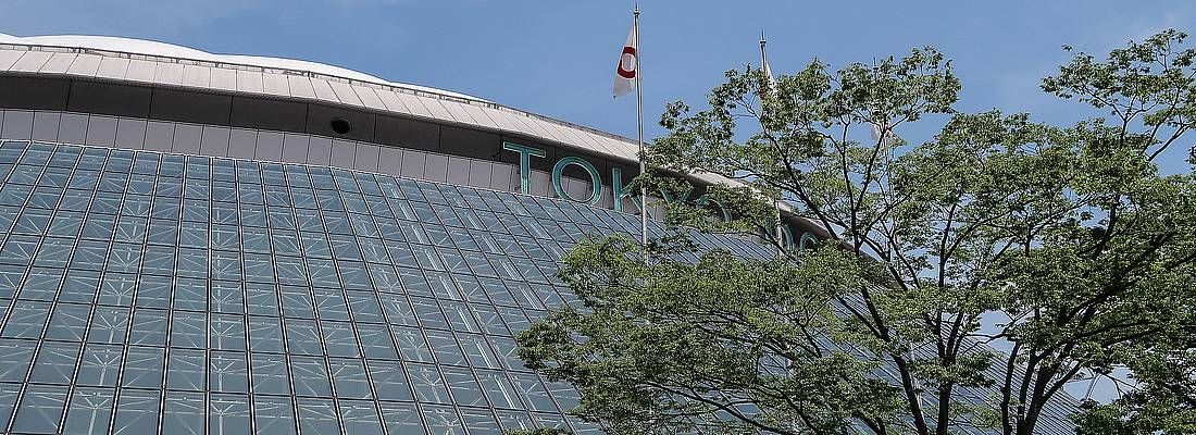 Dettaglio della cupola del Tokyo Dome.