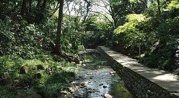 Passeggiata alla valle Todoroki a Setagaya.