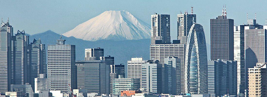 I grattacieli di Shinjuku e sullo sfondo il Monte Fuji.