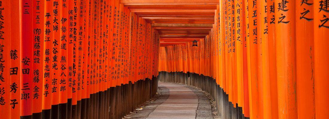 I portali rossi del Fushimi Inari di Tokyo, in un momento in cui non c'è nessuno.