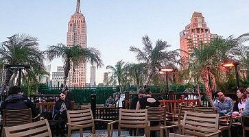 Terrazza al rooftop bar 230 Fifth.