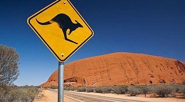 Segnale stradale che indica di far attenzione ai canguri, vicino all'Ayers Rock.