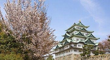 Il castello di Nagoya in primavera.