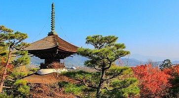 Pagoda del tempio Jojakko-ji in una splendida giornata estiva.