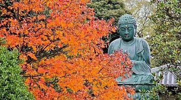 tempio-tennoji