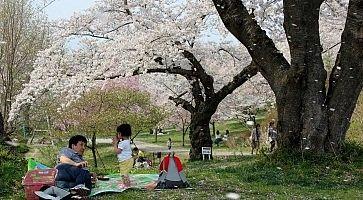 parco-shiroyama