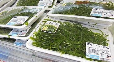 alghe-giapponesi-f