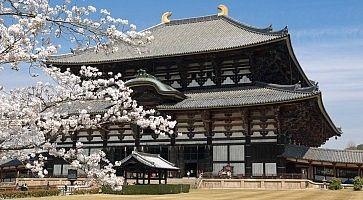 Il tempio Todaiji di Nara, in primavera.